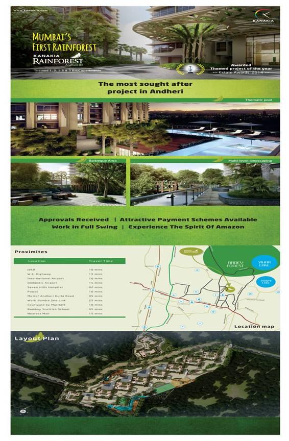 rainforest-flyer2